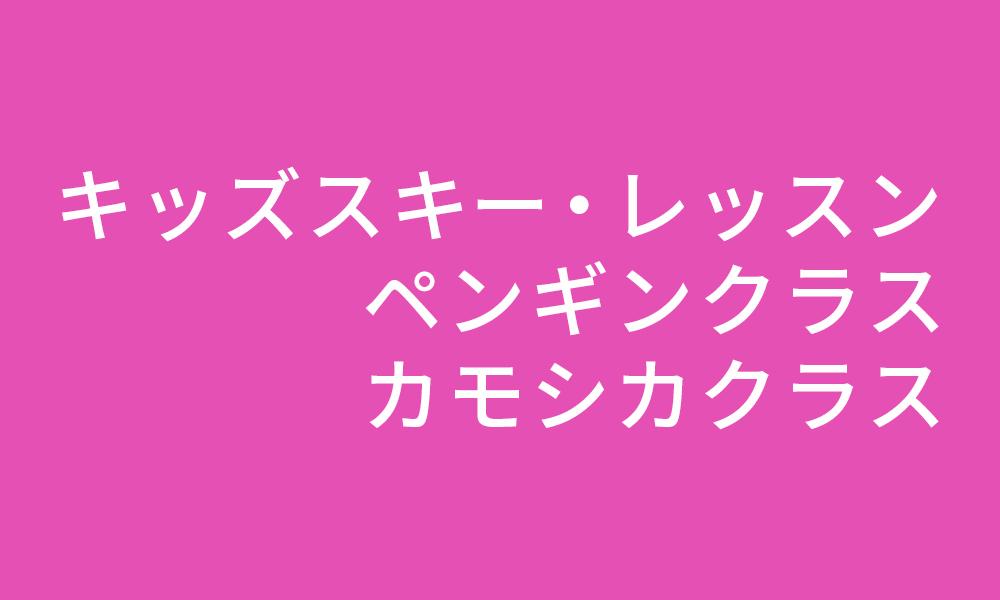キッズスキー・レッスン/ペンギンクラス/カモシカクラス